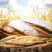 Bread And Wheat Cereal Crops Art Print