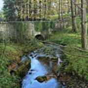 Bridge In Autunm Art Print