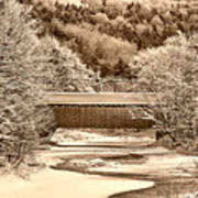 Bridge In Sepia Art Print