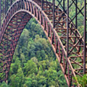 Bridge Of Trees Art Print