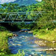Bridge Over Tropical Dreams Art Print