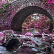 Bridge River Art Print