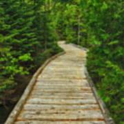 Bridge To Chimney Pond Art Print