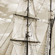 Brigantine Tallship Fritha Sails And Rigging Art Print