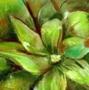 Bright Agave Art Print