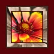 Bright Blanket Flower With Design Art Print