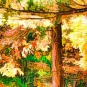 Bright Colored Leaves On The Branches In The Autumn Forest Art Print
