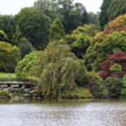 Bright Colors Of Autumn Trees On A Lake , Autumn Landscape. Art Print