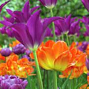 Bright Floral Art Print