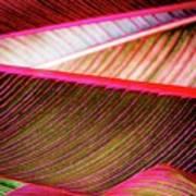 Bright Leaves 548 Art Print