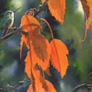 Bright Orange Leaves Art Print
