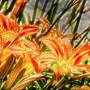 Brighten Your Life Art Print
