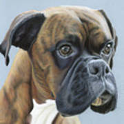 Brindle Boxer Dog - Jack Art Print