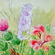 British Wild Flowers Art Print