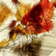 Broken Leaves Art Print