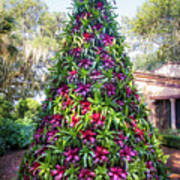 Bromeliad Christmas Tree At Pinewood Estate, Bok Tower Art Print