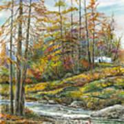 Brook In Autumn Art Print