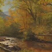 Brook In Woods Art Print