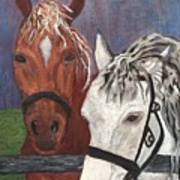 Brown And White Horses Art Print