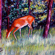 Brown County Deer Art Print