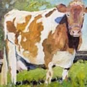 Brown Cow Art Print