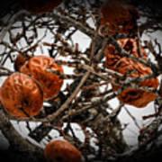Brown Fruit Abstract Art Print