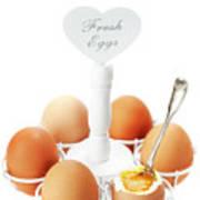 Brown Soft Boiled Eggs  Art Print