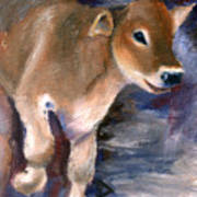 Brown Swiss Calf Aceo Art Print