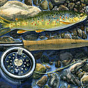 Brown Trout Rush Creek Art Print by Mark Jennings