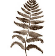 Fern Leaf Botanical Poster, Brown Wall Decor Modern Home Art Print, Abstract Watercolor Painting Art Print