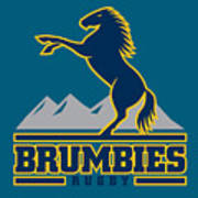 Brumbies Rugby Art Print