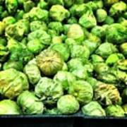 Brussels Sprouts Art Print