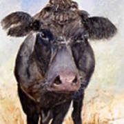 Brutus - Black Angus Cattle Art Print