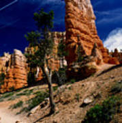 Bryce Canyon 10 Art Print