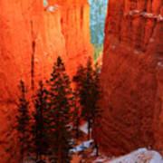 Bryce Canyon Sunrise Glow Art Print