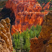 Bryce Canyon Vista Art Print