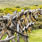 Buck And Rail Fence In The High Country Art Print