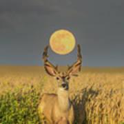 Buck Moon  Art Print