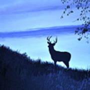 Buck Silhouette In Blue Art Print