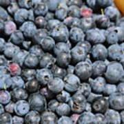 Bucket Of Blueberries Art Print