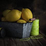 Bucket Of Lemons Art Print