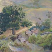 Buckhorn Canyon Art Print