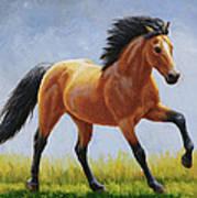 Buckskin Horse - Morning Run Print by Crista Forest