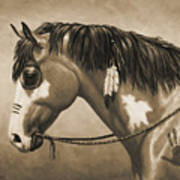 Buckskin War Horse In Sepia Print by Crista Forest