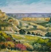 Buena Vista Art Print