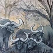 Buffaloes In The Bushveld Art Print