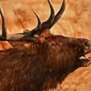 Bugling Bull Elk Autumn Background Art Print
