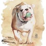 Bull And Ball Art Print
