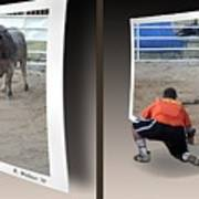 Bull Challenge - Gently Cross Your Eyes And Focus On The Middle Image Art Print