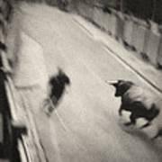 Bull Run 2 Art Print